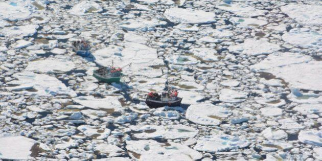 Newfoundland Ice Traps Boats, Prompting Helicopter Rescue For 5