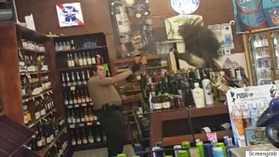 Peacock Trashes California Liquor