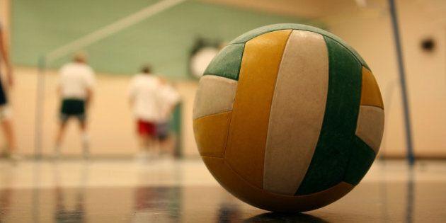 volleyball 002 ball.