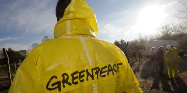 A Greenpeace militant looks towards a reactor of the nuclear power plant of Fessenheim on which Greenpeace...