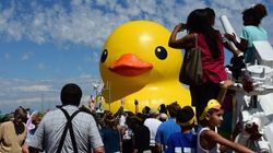 Ontario Is Overpaying For Giant Counterfeit Of My Rubber Duck: