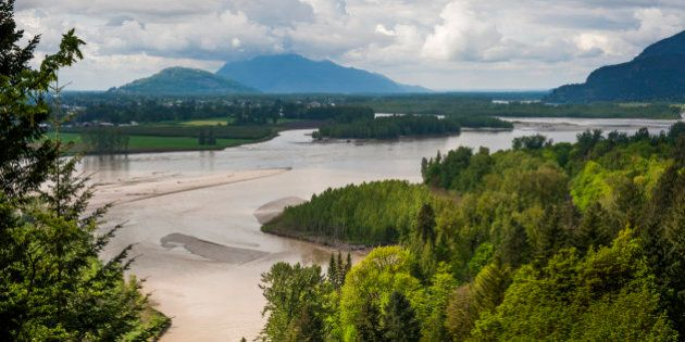 The Frazier River is an important salmon habitat for the lower mainland of British Columbia. A lovely...