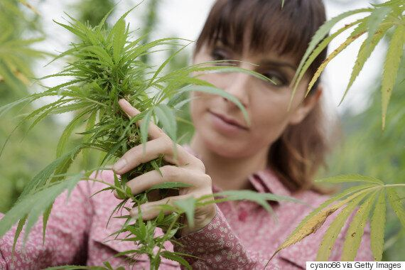 Weed-Loving Moms Deserve To Be In On The