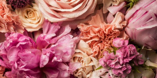 6 Flowers You Need In Your