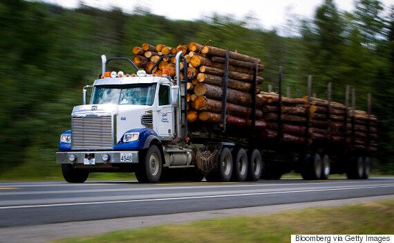 These Parts Of Canada Will Take The Biggest Hit From Trump's Lumber