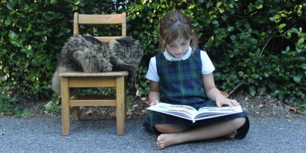 Toronto Kitty Litter-A-Ture Reading Program Pairs Kids With