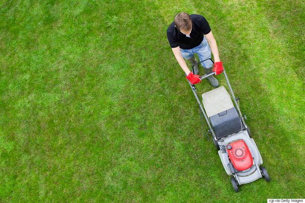 5 Ways To Get The Greenest And Healthiest Lawn On The