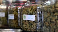 Legalizing Cannabis Will Fail If Producers Can't Brand Their