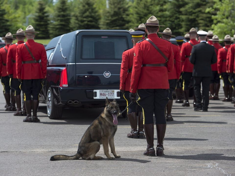Fallen Mountie Dave Ross' Dog Danny Says Final