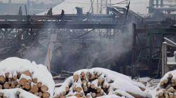Sawmill Blast Suit Targets