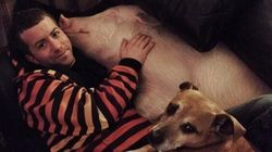 SEE: Toronto Couple Adopts Pet Pig, Makes Her Part Of The