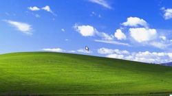 If You're Still Using Windows XP Your Company Is at