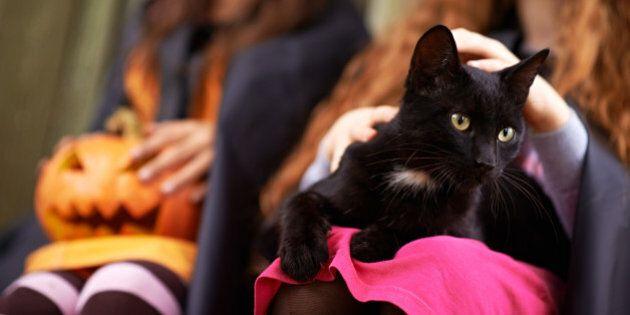 Black kitten sitting on the lap of little girl celebrating Halloween with her friend