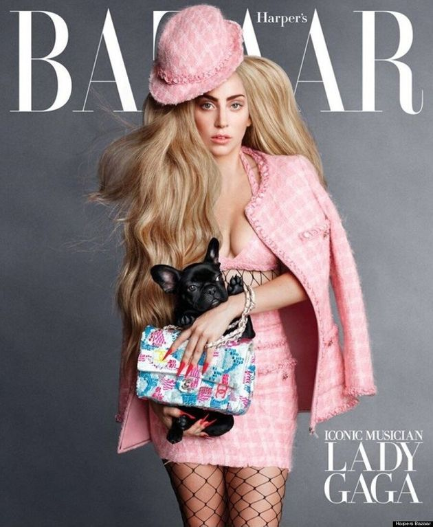 Lady Gaga's Dog Gets Its First Magazine Cover For Harper's