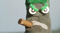 Ed The Sock Really Dislikes Tim