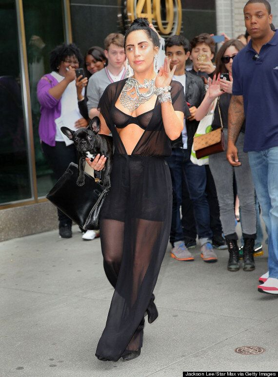 Lady Gaga Shows Off Nipples, Shaved Head And French Bulldog