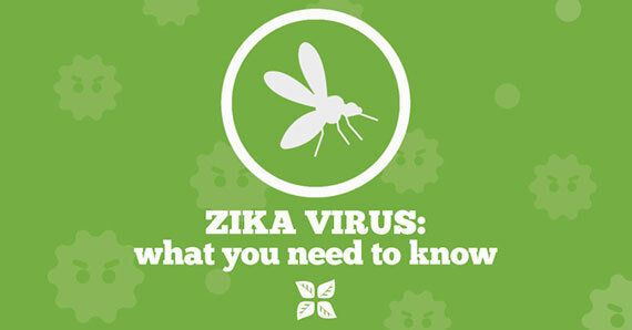 Zika Virus: What You Need To