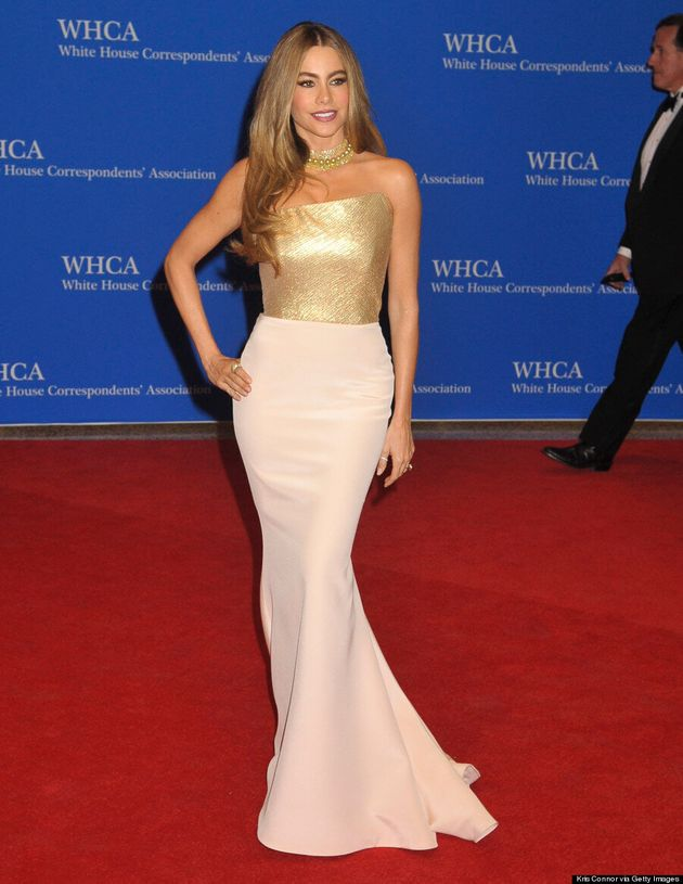 Sofia Vergara Is Perfectly Elegant At White House Correspondents'