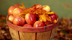 Cozy Up This Fall With These Apple