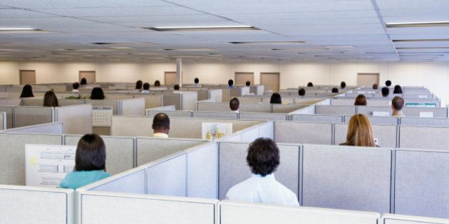 Large group of office workers, each standing in own cubicle, elevated view, rear view