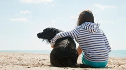 Stop Hugging Your Dog, Says
