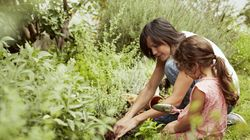 Gardening Newbie? 5 Expert Tips To Get You