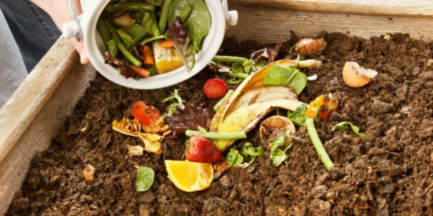 Pouring food scraps into a compost