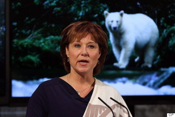 B.C. Premier Blasts Feds Over 'Totally Inadequate' Diesel Spill
