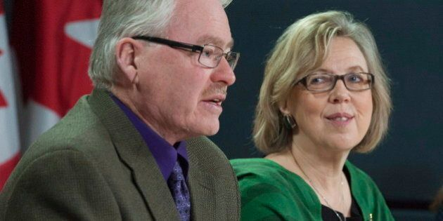Bruce Hyer, Former NDP MP, Named Green Party Deputy