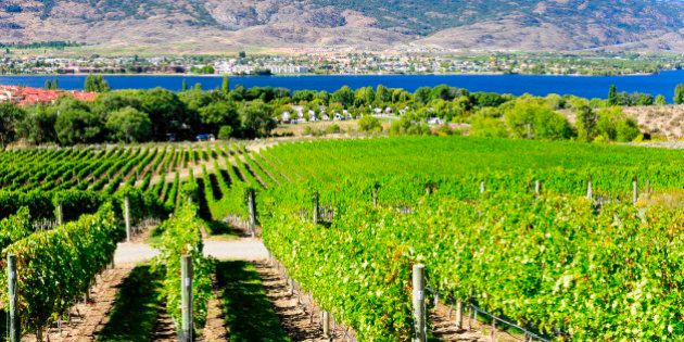 Okanagan Valley Named Among Best Wine Regions To Visit IN THE