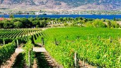 Okanagan Valley Among Best Wine Regions IN THE