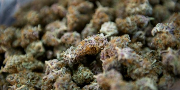 Medical marijuana buds, or flowers as they are also known, are displayed for an arranged photograph at...