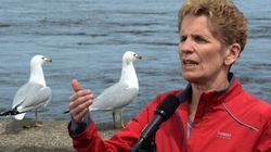 Wynne Accepts Candidates' Apologies For 'Inappropriate'