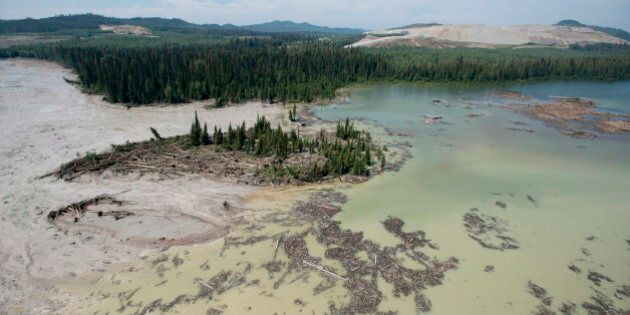 Mount Polley Tailings Pond Sediment Not Toxic To Humans, May Harm Aquatic Life, Say
