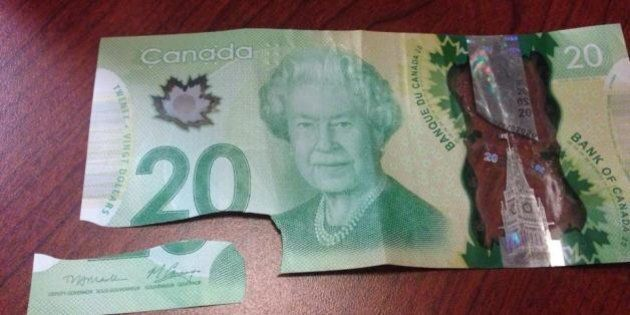 Canada's New Money Snaps In Freezing Weather? Claim Put To The