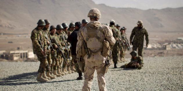 Military Suicides: Veterans Benefits Changes May Be Factor, MPs