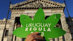 Uruguay Mulls Importing Weed .. From