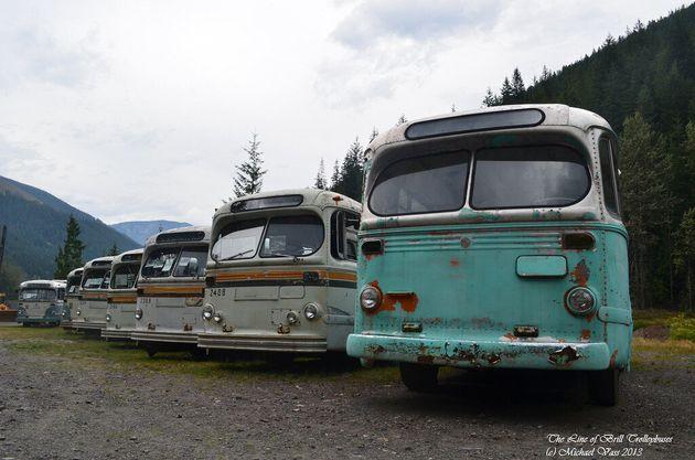 Vancouver Trolley Bus Fleet Lives In B.C. Ghost