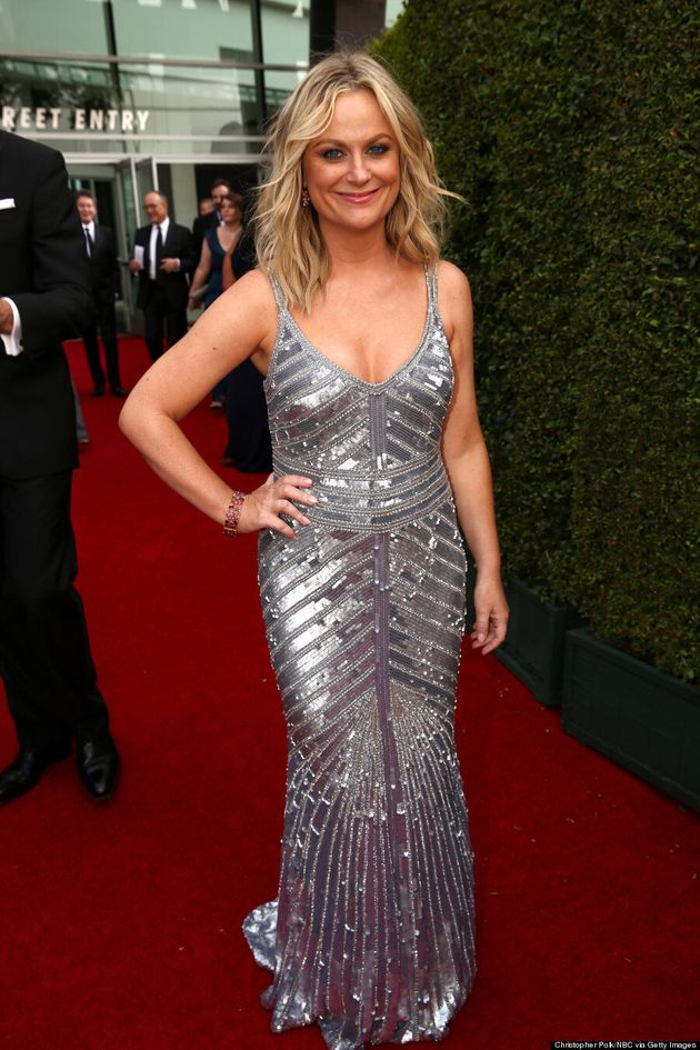 Amy Poehler Displays Eyeful Of Cleavage At The 2014