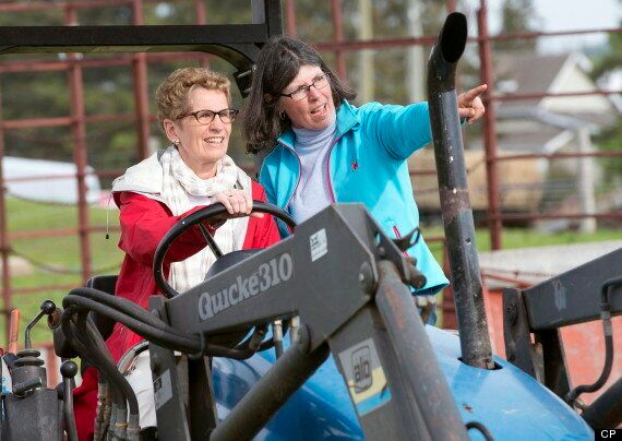 Ontario Election 2014: Wynne Accused Of Setting Poor Example With Tractor