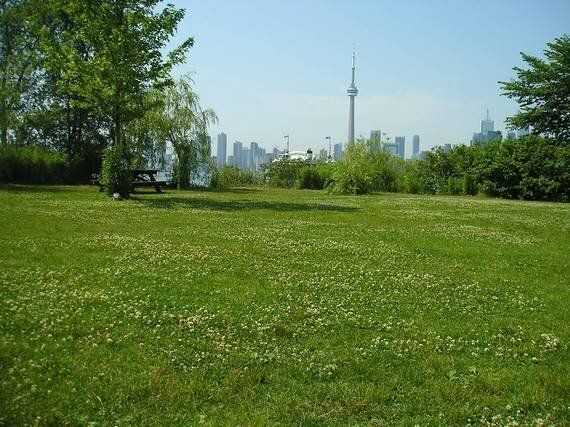 Toronto Is Suffering From Some Growing