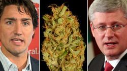 Feds Spend Big To Fight The Pot