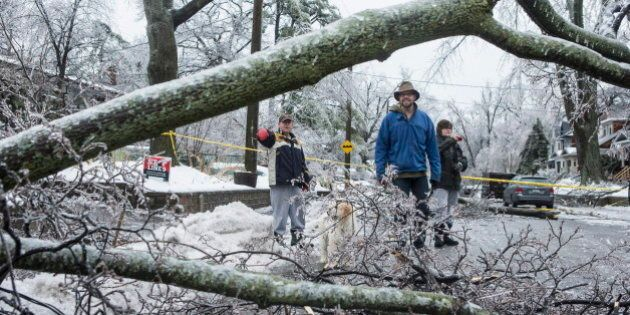 Ice Storm 2013: Ontario, Quebec And East Coast Hit By Massive Storm (PHOTOS, LIVE