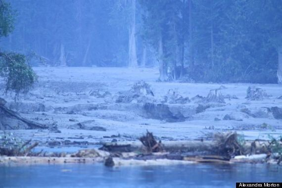 Mount Polley Mine Spill Left Blue Film On Water: