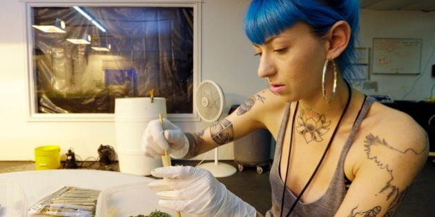 Washington State Marijuana Sales: 5 Things You Should