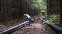 Pipeline From Oilsands To Arctic Feasible: