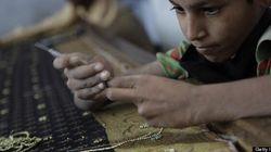 Sweatshops Exist In Canada: Not-For-Profit