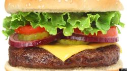 Don't Ban my Burgers: Why Nutrition Zealots Have it All