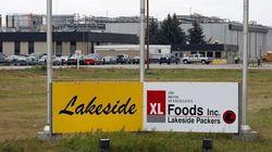 Alberta Town In Crisis Mode Following Beef Recall