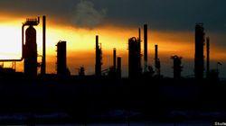 Energy Watchdog Names New